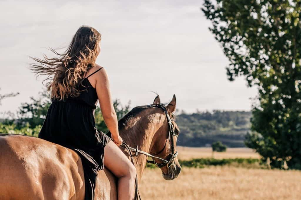 Can You Wear Shorts Horseback Riding The Best Riding Gear For Summer Horse Learner