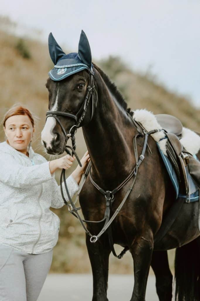 How to get on a horse without a mounting block
