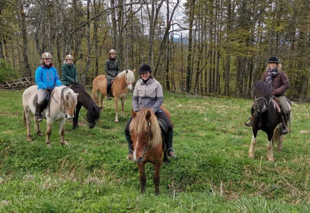 Horse Riding Holiday in Alsace